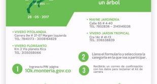Carrera verde 10K por Montería