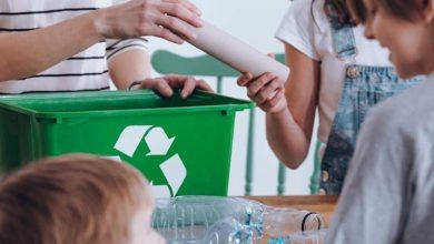 cómo y qué podemos reciclar