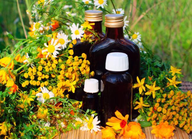 Conoce 5 flores medicinales