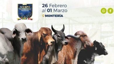 Programación del Foro internacional de ganadería sostenible y productiva