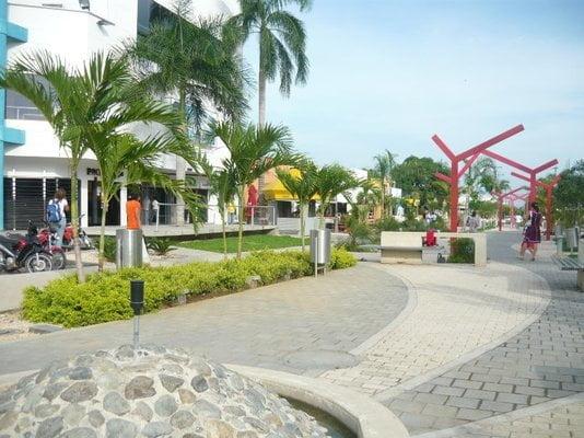 Asociación de Comerciantes de Montería se declara en quiebra colectiva