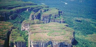 Explore el Parque Nacional Natural Chiribiquete con una exposición virtual