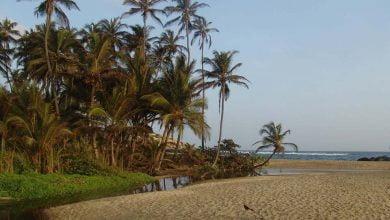 Las playas del parque Tayrona abrirán a turistas