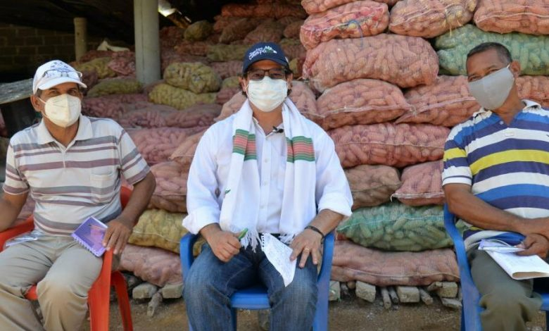 Productores de maíz blanco de Córdoba recibirán incentivo