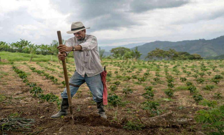 Productos que podrá comprar el sector Agro en el Día sin IVA