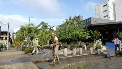 Sectores de Montería que no tendrán servicio de aseo el 1 de enero