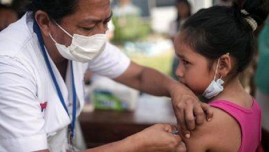 Mañana 30 de enero es día de ponerse al día con las vacunas