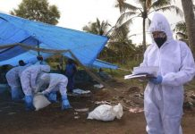 Detectan en Rusia caso de gripe aviar H5N8 en humanos