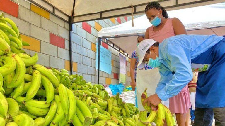 Agéndate para las ofertas del próximo Mercado Campesino en Montería: nosotros te compartimos dos recetas imperdibles a base de yuca y plátano